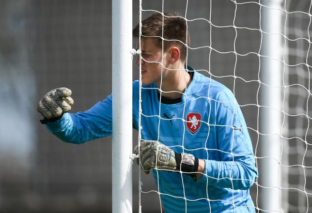 Man Utd sign teenage Czech goalkeeper Radek Vitek