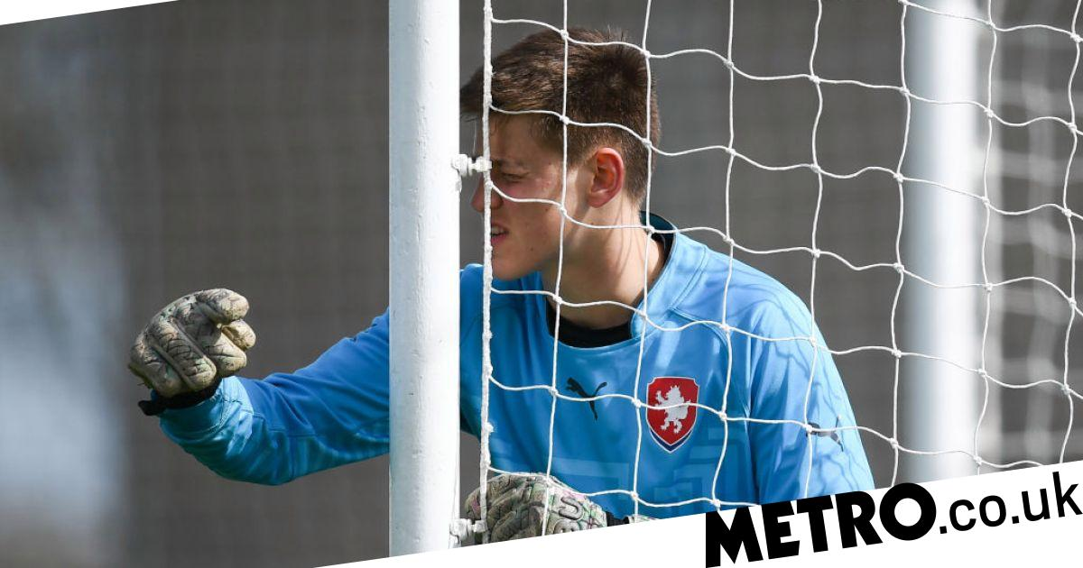 Surprise new Man Utd signing Radek Vitek reacts to 'dream' transfer