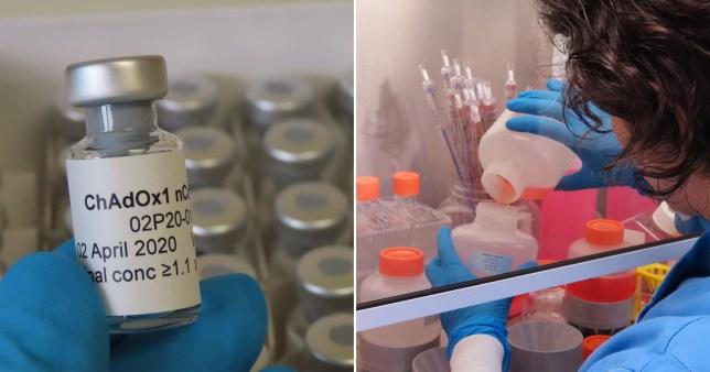 The UK has set up a coronavirus vaccine task force
