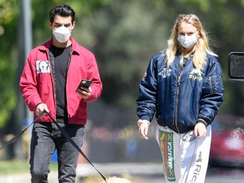 Sophie Turner and Joe Jonas walk their dogs in masks as they keep fans guessing about 'pregnancy'