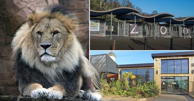 Zoos lockdown