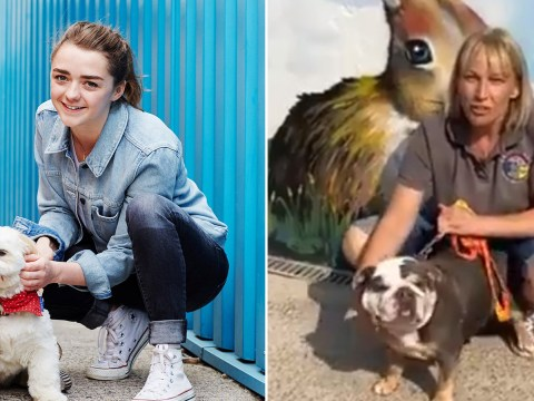 Game Of Thrones' Maisie Williams donates £50,000 to local animal shelter amid coronavirus