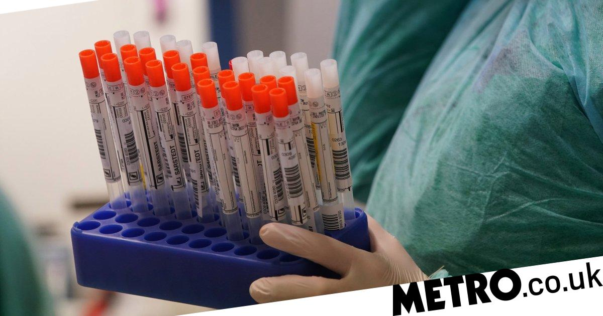 UK firm selling coronavirus test kits abroad because British labs can't use them