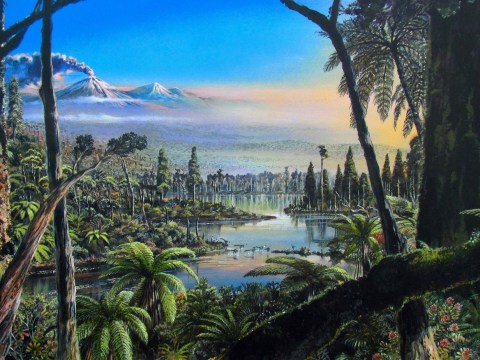 Antarctica was covered in rainforests when dinosaurs roamed Earth