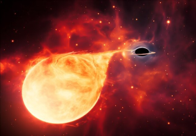This artist???s impression depicts a star being torn apart by an intermediate-mass black hole (IMBH), surrounded by an accretion disc. This thin, rotating disc of material consists of the leftovers of a star which was ripped apart by the tidal forces of the black hole.