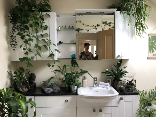 : JOE BAGLEY, 20, OF LOUGHBOROUGH, LEICESTERSHIRE, KEEPS HIS 'SPECIAL' PLANTS IN THE BATHROOM
