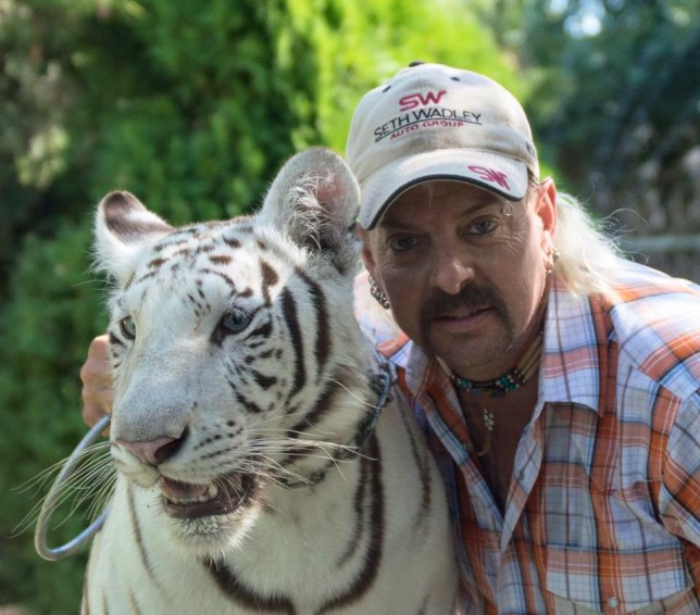 An Oklahoma tiger zoo owner has been arrested for allegedly trying to arrange the murder of an animal rights activist he had been feuding with for years. Joseph Maldonado Passage, 55, aka Joe Exotic, was arrested in Oklahoma on Friday on suspicion of plotting the murder of Carole Baskin, 57, an animal rights activist who runs a rescue sanctuary with her husband in Florida. According to federal prosecutors, Maldonado, who ran for president in 2016, hired a hit man to kill Baskin in November last year. He allegedly paid the unnamed hit man $3,000 to travel to Florida to track Baskin down.