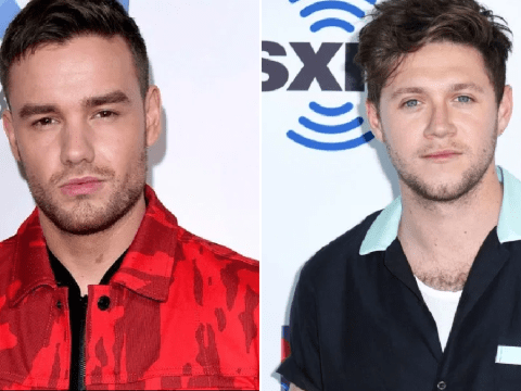 Liam Payne and Niall Horan mock Louis Tomlinson as they reunite during lockdown ahead of One Direction 'reunion'