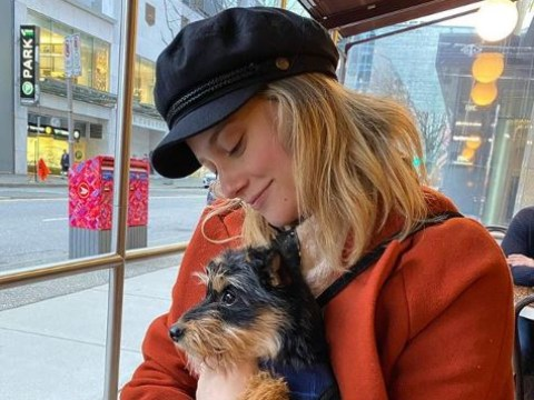 Riverdale star Lili Reinart's dog 'skittish' as he recovers from surgery after 'horrific' attack