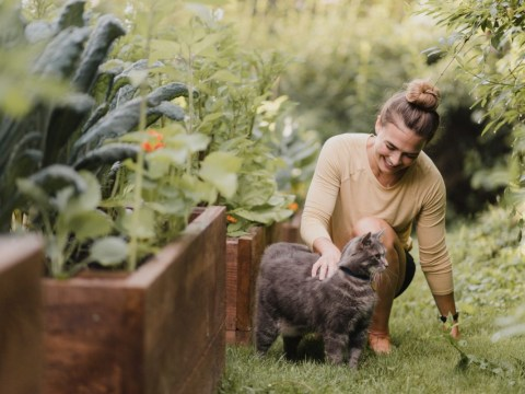 Spending time in your garden is good for your mental and physical health, says study