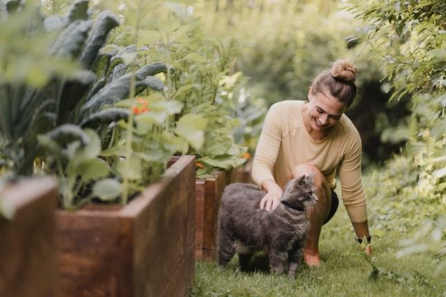 Woman gardener with cat in garden