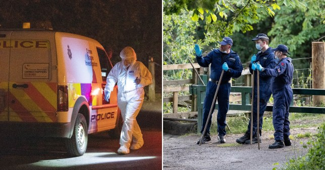 A man has been arrested on suspicion of murder after a woman's body was discovered at Reddish Vale Country Park, Greater Manchester.