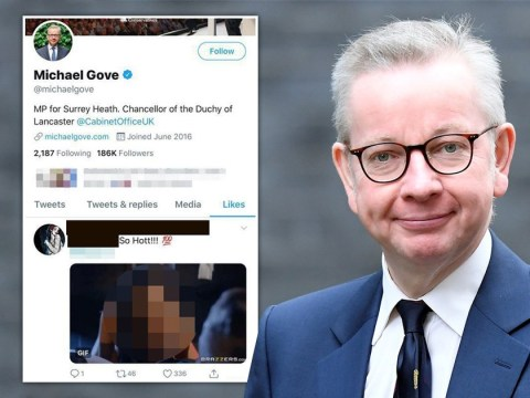 Michael Gove's Twitter account 'likes' porn picture before swiftly unliking