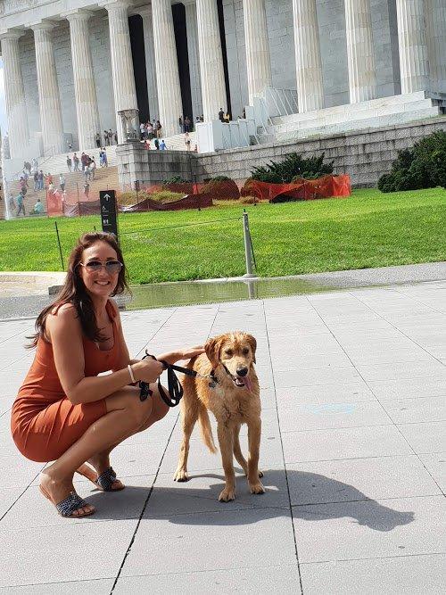 Laura Fisher dog sitting in Washington DC