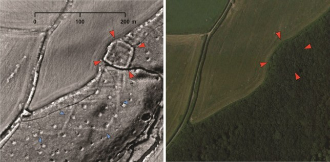 A probable Iron Age or Roman enclosed settlement (indicated by red arrows) and an associated field system (inidicated by blue arrows), which is hidden beneath woodland but has been revealed by volunteers using light detection and ranging (LiDAR) data during lockdown. (Credits: PA)
