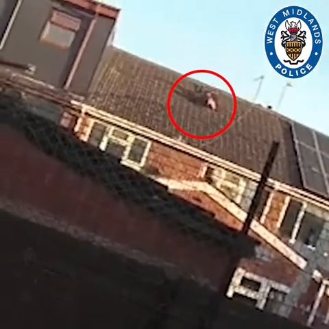 (Picture: West Midlands Police) A suspected drug network ?money man? made a botched bid to distance himself from a safe-full of cash by hurling it from a first floor window?sending it crashing onto the roof of his Birmingham home extension. Officers forced entry to the address in Serpentine Road at around 6am today (18 May) on the back of intelligence it was linked to a drugs supply gang. A man was arrested moments after dropping a safe from a window which fell onto a ground floor extension and shattered several roof tiles. We recovered the safe and found it to contain around ?27,000 in cash.