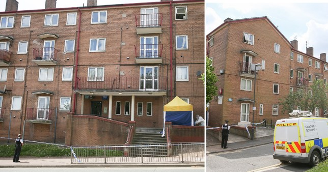 Murder arrest after woman 'fell from window'