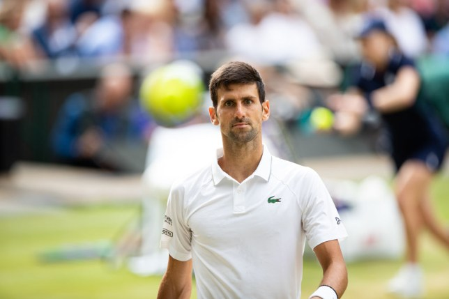 Novak Djokovic of Serbia in action during the Men's Singles Final against Roger Federer of Switzerland (not pictured) at The Wimbledon Lawn Tennis Championship at the All England Lawn and Tennis Club at Wimbledon on July 14, 2019 in London, England.