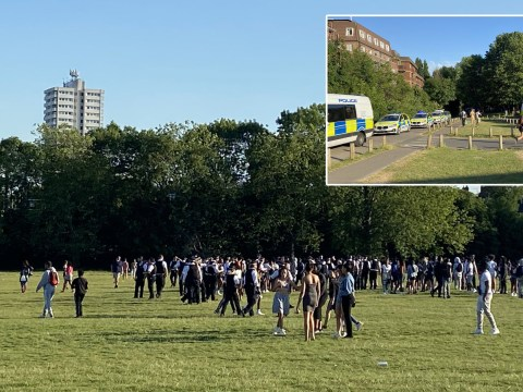 Police break up mass brawl between hundreds of young people in London park