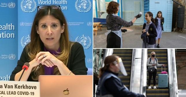 Coronavirus without symptoms is 'very rare', World Health Organisation says