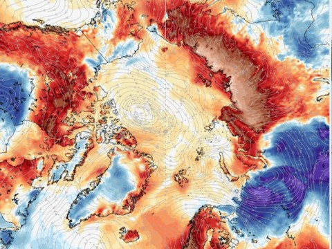 Arctic Circle records hottest ever day as temperature hits 38°C