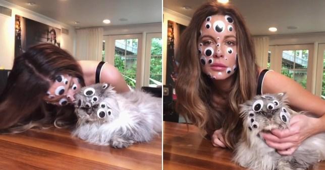 Kate Beckinsale trypophobia