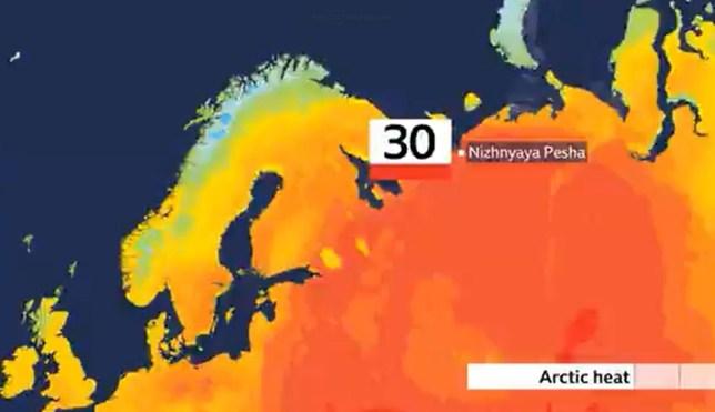 La température dans le cercle arctique atteint 30 ° C