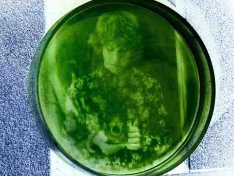 Student manages to print photos onto algae
