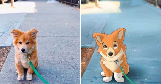 A dog and Isa Bredt's animation