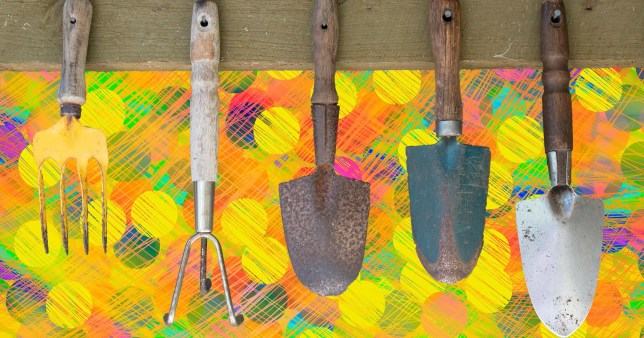 garden tools on a colourful background
