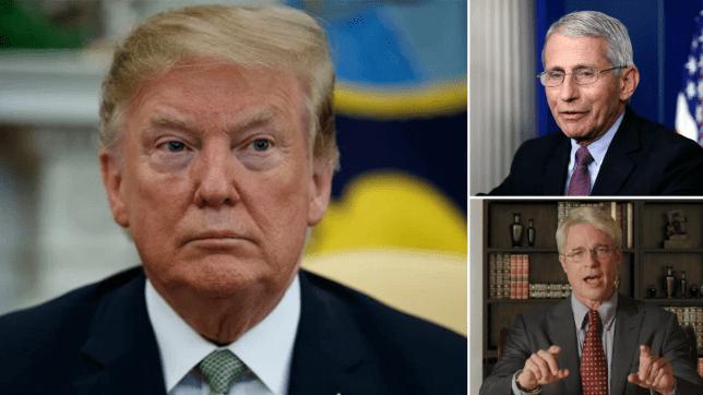 Photo composite de Donald Trump, Dr fauci et Brad Pitt