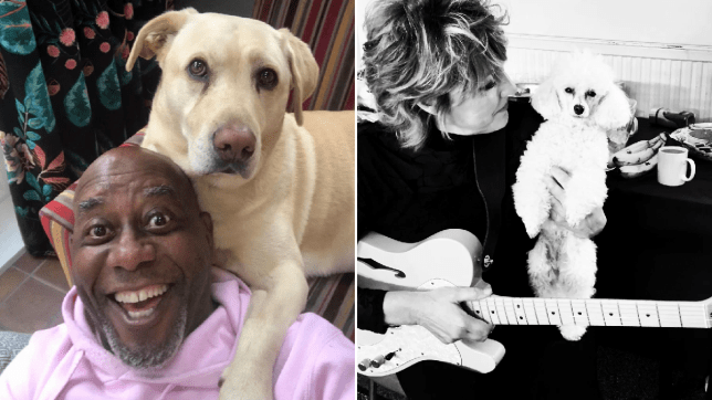 Ainsley Harriet and his dog