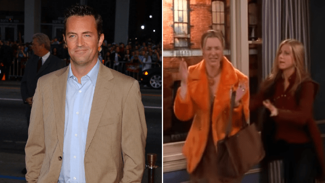 Matthew Perry Lisa Kudrow Friends my eyes