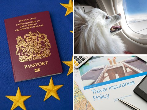 How Brexit will impact your holidays, pets and mobile phone charges