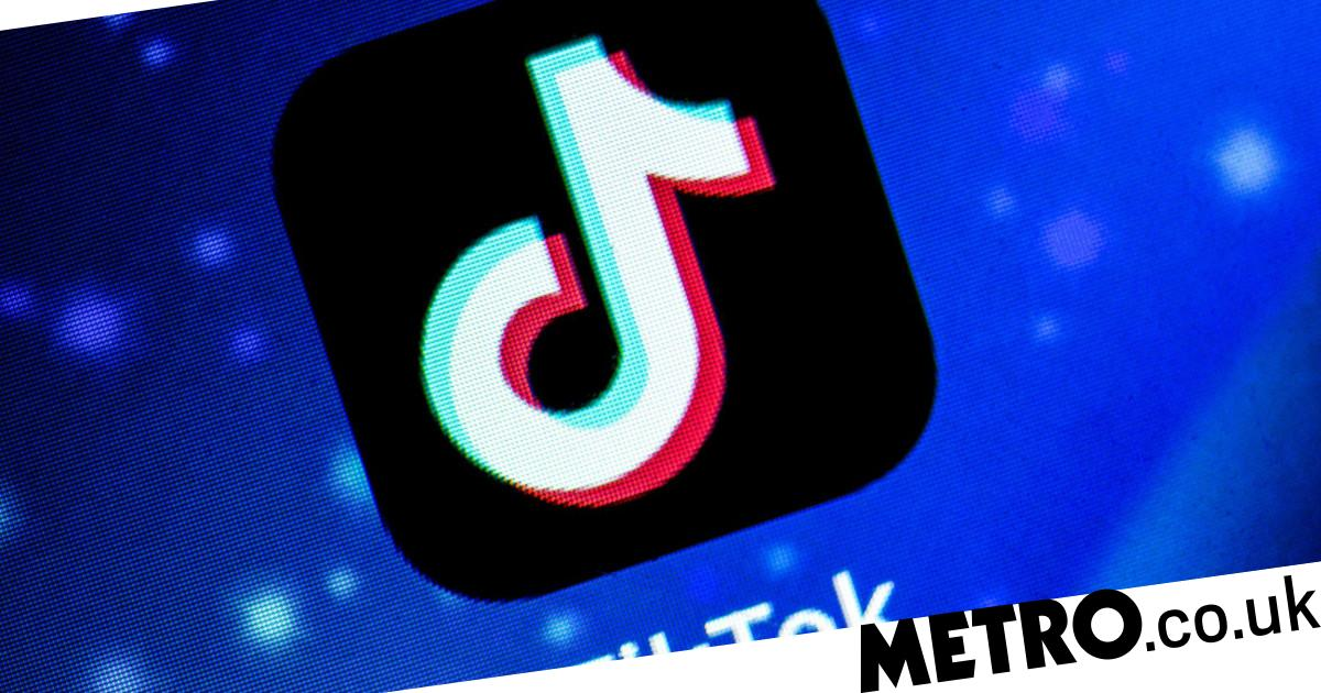 Nazi-themed song went viral on TikTok with over 6.5 million views - metro