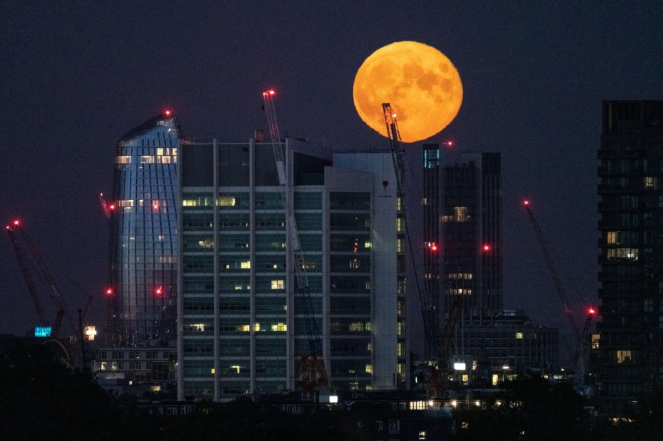 Alamy Live News. 2C5XRY8 London, UK. 5th July, 2020. UK Weather: Full Moon ?Buck Moon? rises over the city seen from Primrose Hill. Referred to as the ?Buck Moon?, in reference to the time male deer?s antlers grow, July?s Full Moon has long been associated with relaxation and observing the cycles of nature. Credit: Guy Corbishley/Alamy Live News This is an Alamy Live News image and may not be part of your current Alamy deal . If you are unsure, please contact our sales team to check.