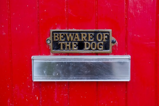 Beware of dog sign above a house's letter box for safety of visitors or postman and delivery man