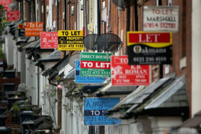 An array of To Let and For Sale signs protrude from houses in the Selly Oak area of Birmingham