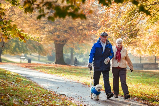Senior couple walking their dog through a public park in Autumn.
