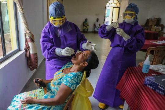 epa08544775 Une femme sri-lankaise subit un test d'écouvillonnage COVID -19 à Colombo, Sri Lanka, le 14 juillet 2020. Le gouvernement sri-lankais a levé la plupart des restrictions sur les coronavirus, qui ont été mises en œuvre il y a près de quatre mois, et se prépare à une réouverture complète de entreprises et activités pour éviter un marasme économique. EPA / CHAMILA KARUNARATHNE