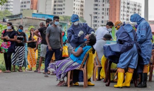 Pandémie de coronavirus au Sri Lanka