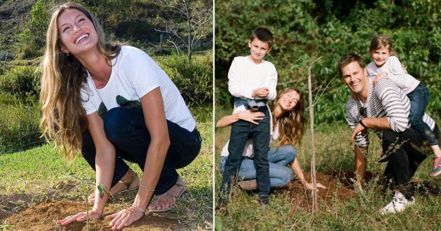 Gisele B?ndchen planting 40,000 trees for her 40th birthday Pics: Gisele Bu?ndchen/Instagram