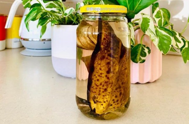 Picture: The Pantry Mama/ Facebook Mum brings dying plants back to life with banana peels and water