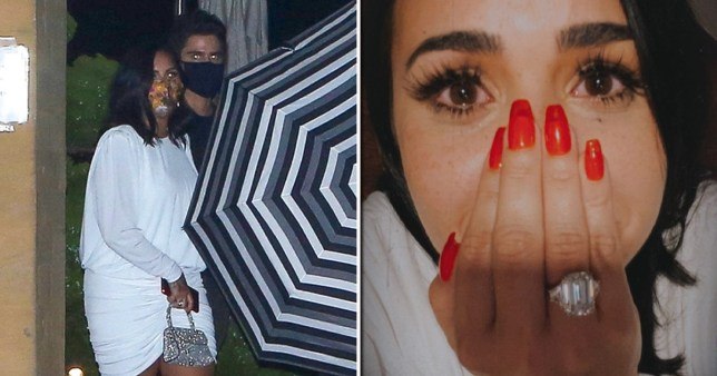 Demi Lovato and new fiancee Max