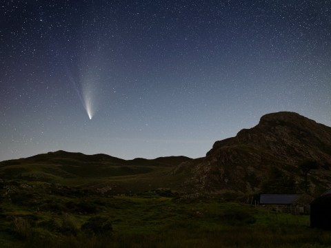 This week is your last chance to see Comet Neowise for 7,000 years