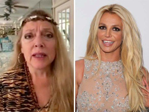 Tiger King star Carole Baskin says Britney Spears 'should be in the wild' amid #FreeBritney movement