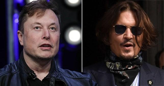 Elon Musk pictured separately alongside Johnny Depp