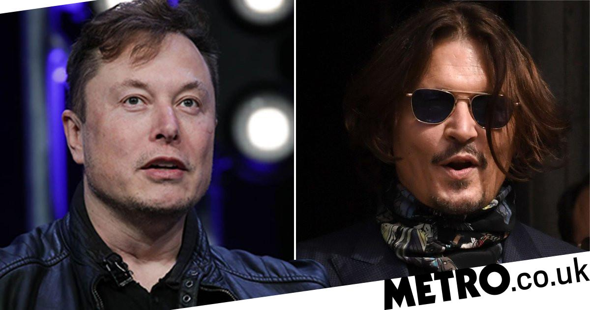 Elon Musk challenges Johnny Depp to 'cage fight' over penis threat