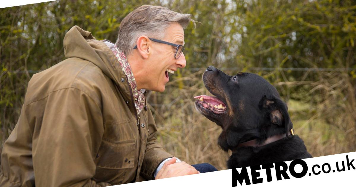 Channel 5 joins forces with The Dogfather on hunt for Britain's naughtiest pups