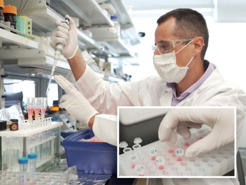 Blood test can detect Alzheimer's disease 20 years before symptoms show
